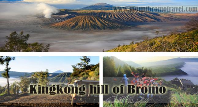 Kingkong Hill of Bromo